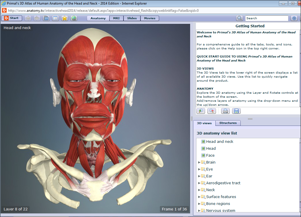Fancy 3d Anatomy Online Adornment - Human Anatomy Images ...